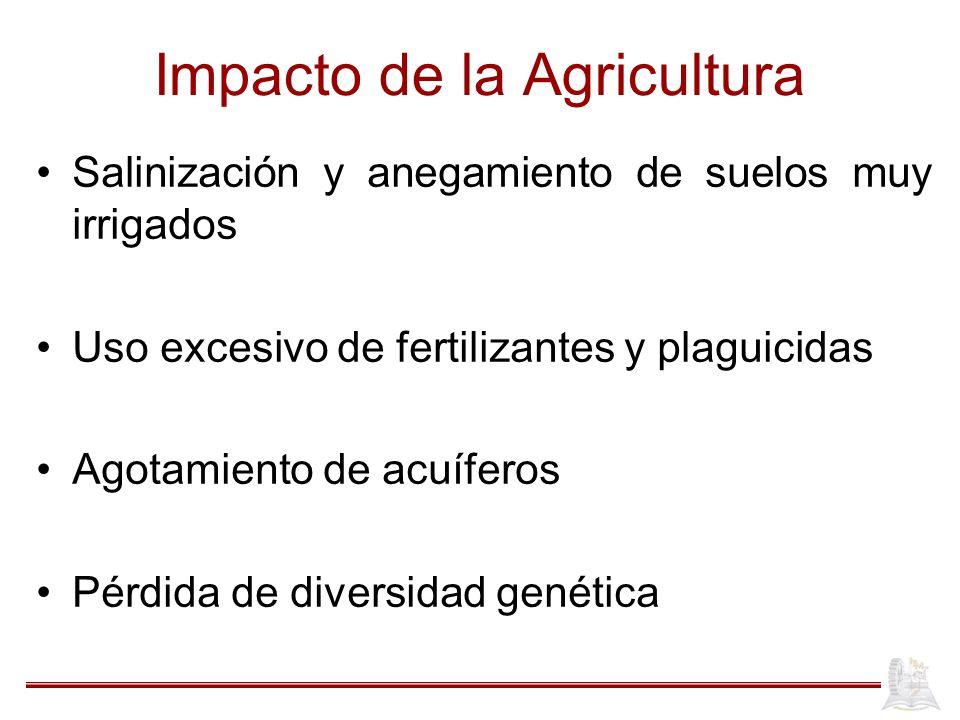 Impacto de la Agricultura Salinización y anegamiento de suelos muy irrigados Uso excesivo de fertilizantes y plaguicidas Agotamiento de acuíferos Pérd