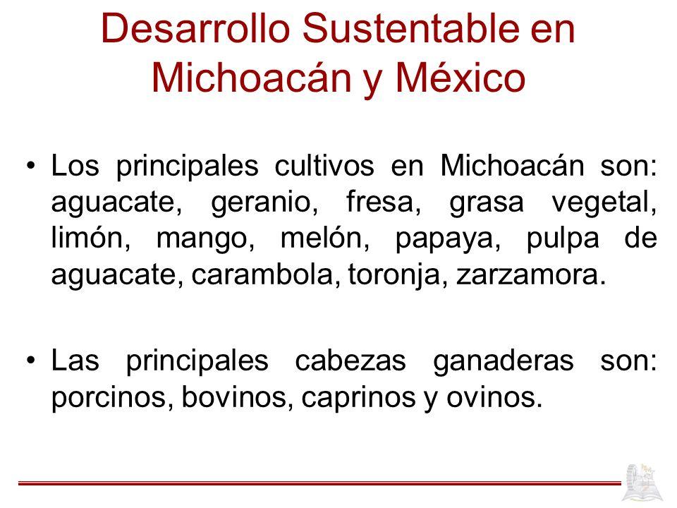 Desarrollo Sustentable en Michoacán y México Los principales cultivos en Michoacán son: aguacate, geranio, fresa, grasa vegetal, limón, mango, melón,