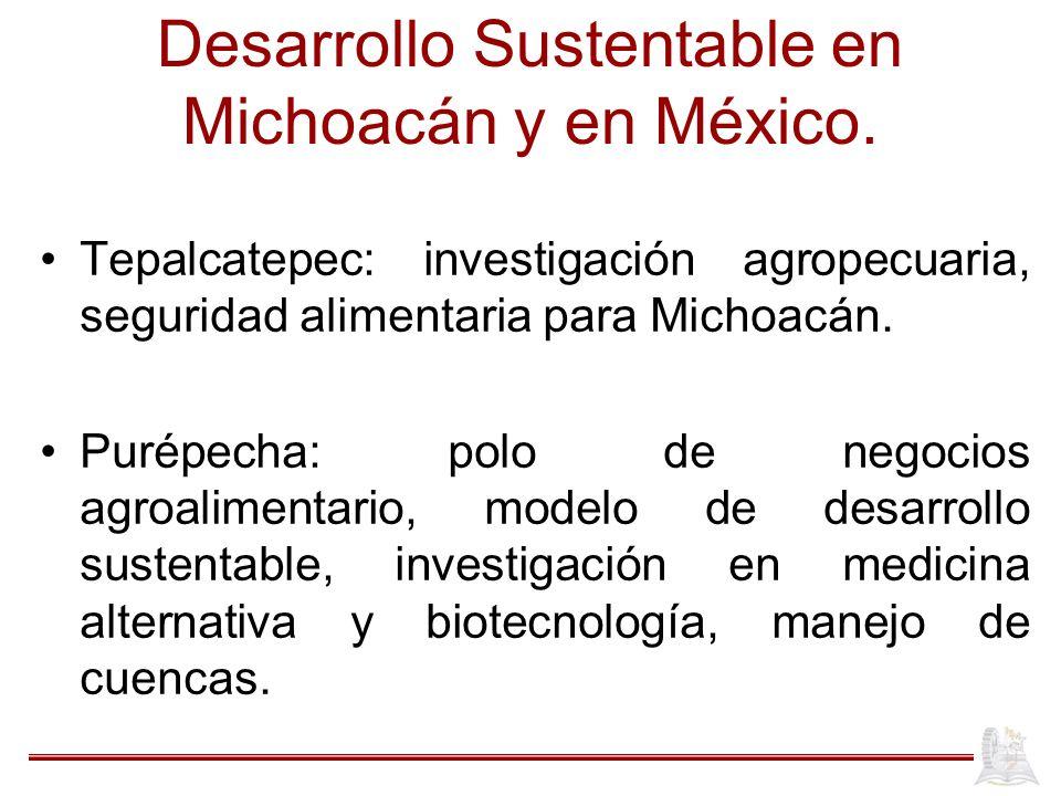 Desarrollo Sustentable en Michoacán y en México. Tepalcatepec: investigación agropecuaria, seguridad alimentaria para Michoacán. Purépecha: polo de ne
