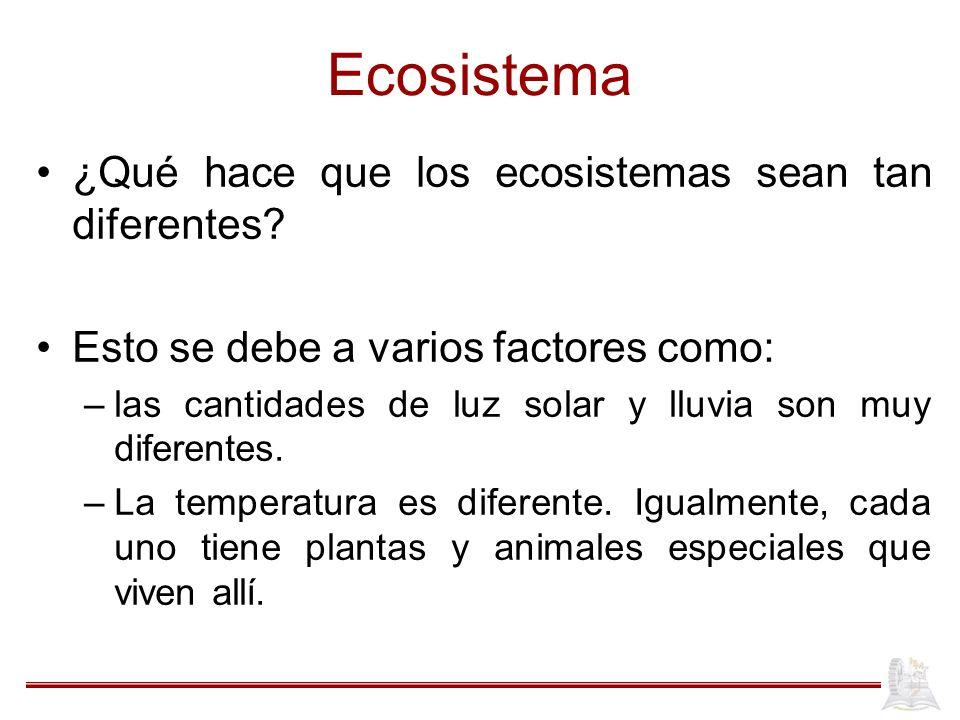 Ecosistema ¿Qué hace que los ecosistemas sean tan diferentes? Esto se debe a varios factores como: –las cantidades de luz solar y lluvia son muy difer