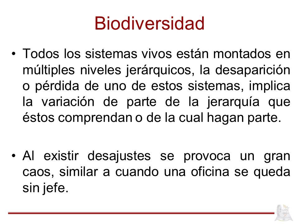 Biodiversidad Todos los sistemas vivos están montados en múltiples niveles jerárquicos, la desaparición o pérdida de uno de estos sistemas, implica la