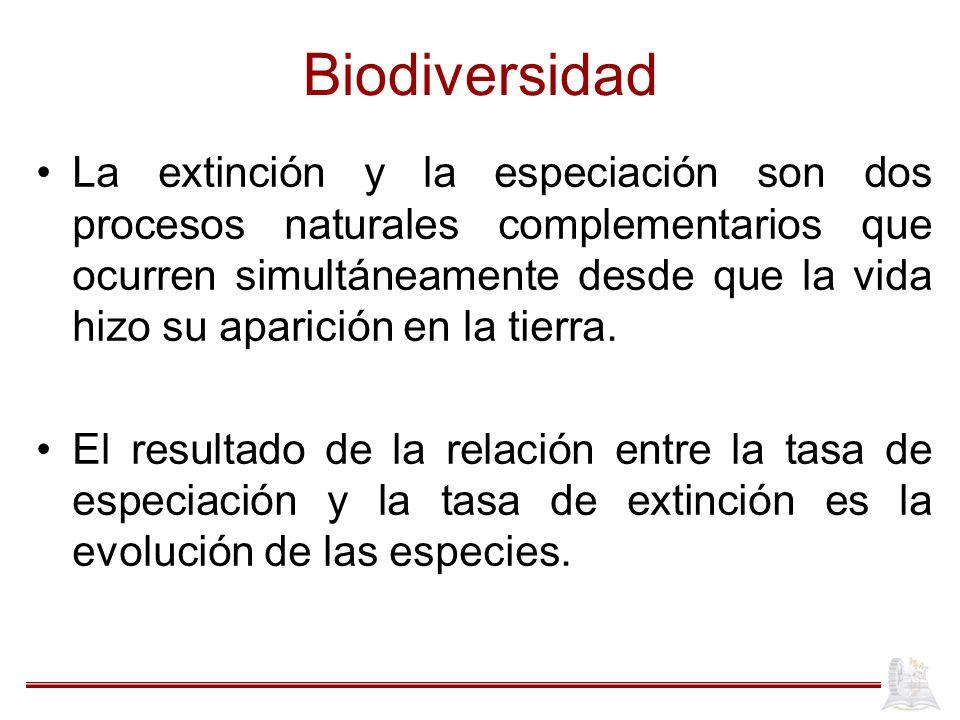 Biodiversidad La extinción y la especiación son dos procesos naturales complementarios que ocurren simultáneamente desde que la vida hizo su aparición