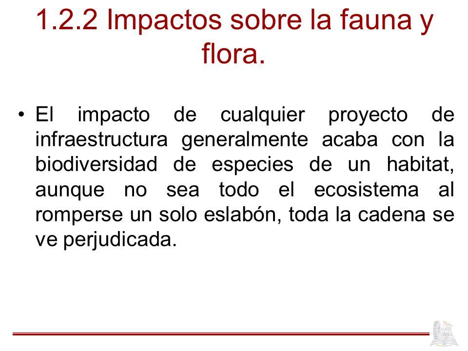 1.2.2 Impactos sobre la fauna y flora. El impacto de cualquier proyecto de infraestructura generalmente acaba con la biodiversidad de especies de un h