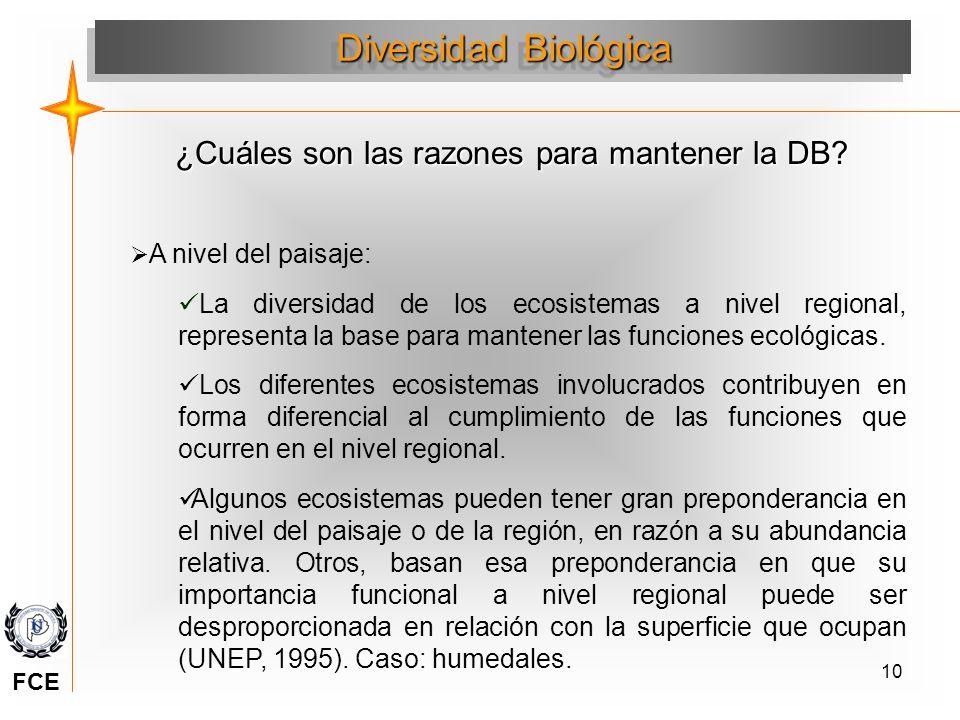 10 A nivel del paisaje: La diversidad de los ecosistemas a nivel regional, representa la base para mantener las funciones ecológicas. Los diferentes e