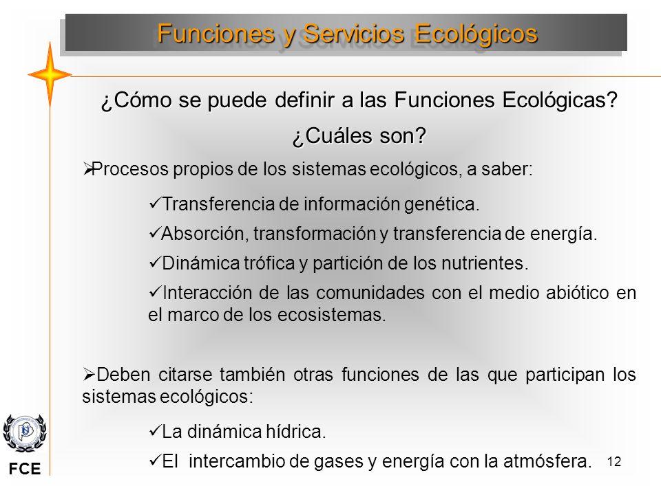 12 ¿Cómo se puede definir a las Funciones Ecológicas? ¿Cuáles son? Procesos propios de los sistemas ecológicos, a saber: Transferencia de información