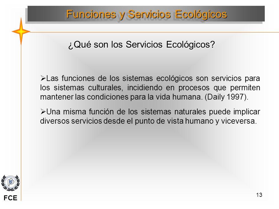 13 ¿Qué son los Servicios Ecológicos? Las funciones de los sistemas ecológicos son servicios para los sistemas culturales, incidiendo en procesos que