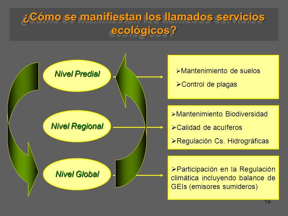 15 ¿Cómo se manifiestan los llamados servicios ecológicos? Mantenimiento de suelos Control de plagas Nivel Predial Nivel Regional Nivel Global Manteni