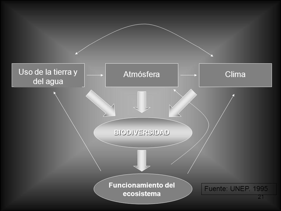 21 Uso de la tierra y del agua AtmósferaClima BIODIVERSIDAD Funcionamiento del ecosistema Fuente: UNEP. 1995