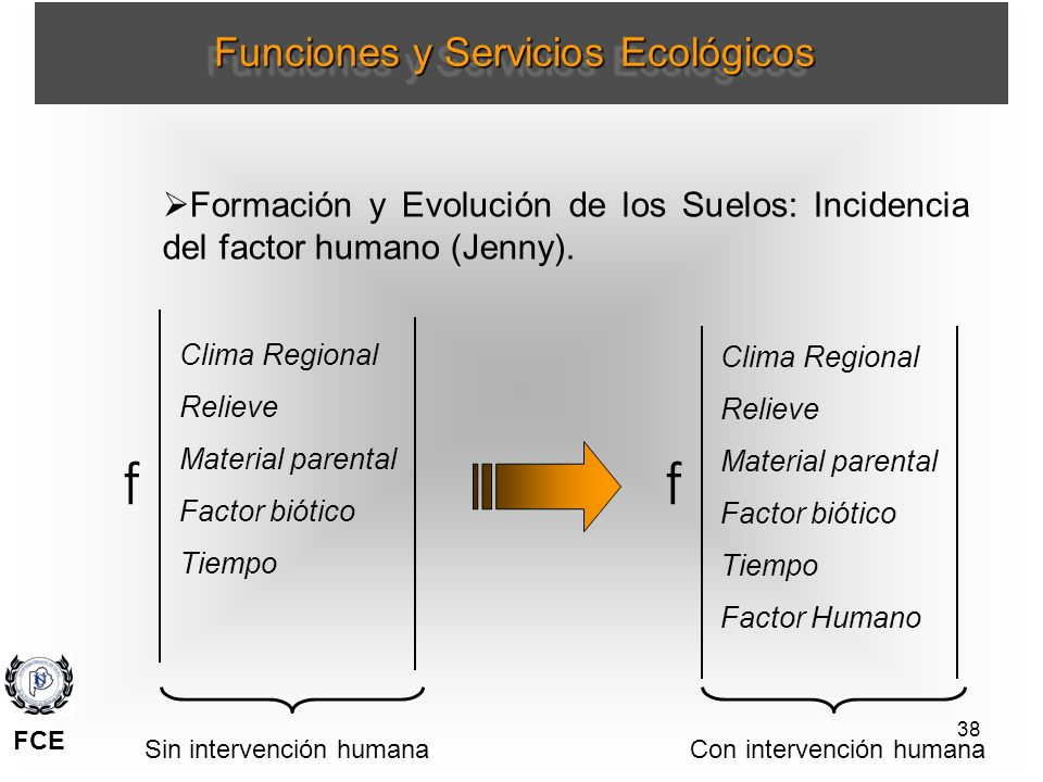38 Formación y Evolución de los Suelos: Incidencia del factor humano (Jenny). Clima Regional Relieve Material parental Factor biótico Tiempo ff Clima