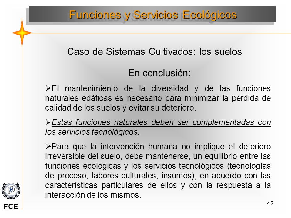 42 En conclusión: El mantenimiento de la diversidad y de las funciones naturales edáficas es necesario para minimizar la pérdida de calidad de los sue