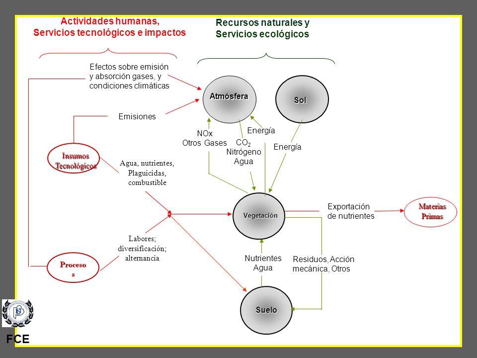 43 Relación entre servicios ecológicos y tecnológicos en agroecosistemas MateriasPrimas Exportación de nutrientes Recursos naturales y Servicios ecoló