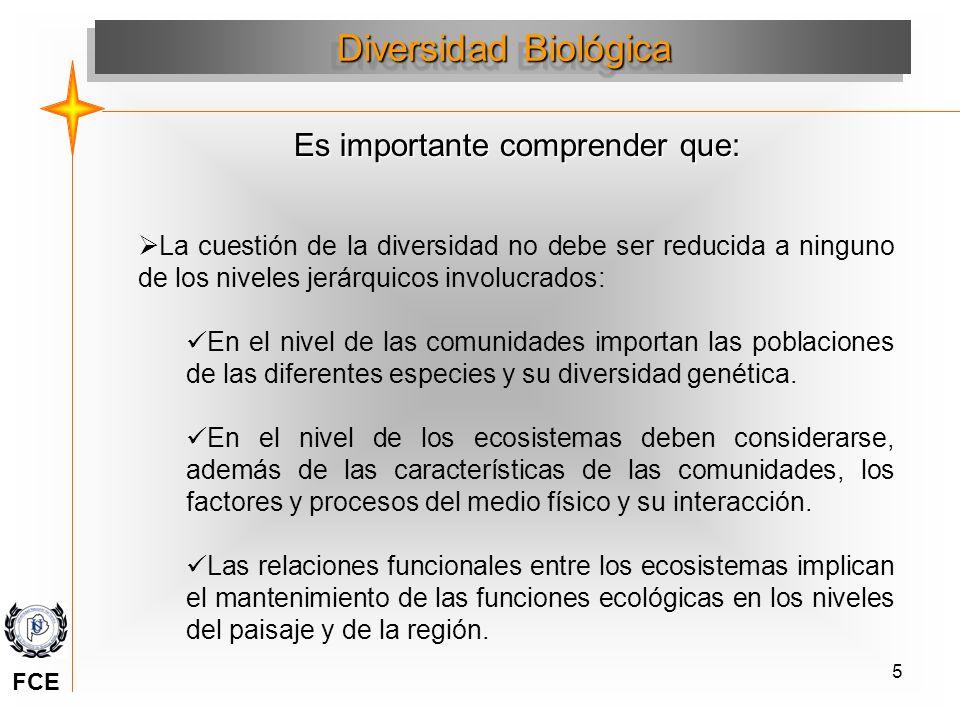 5 Diversidad Biológica Es importante comprender que: La cuestión de la diversidad no debe ser reducida a ninguno de los niveles jerárquicos involucrad
