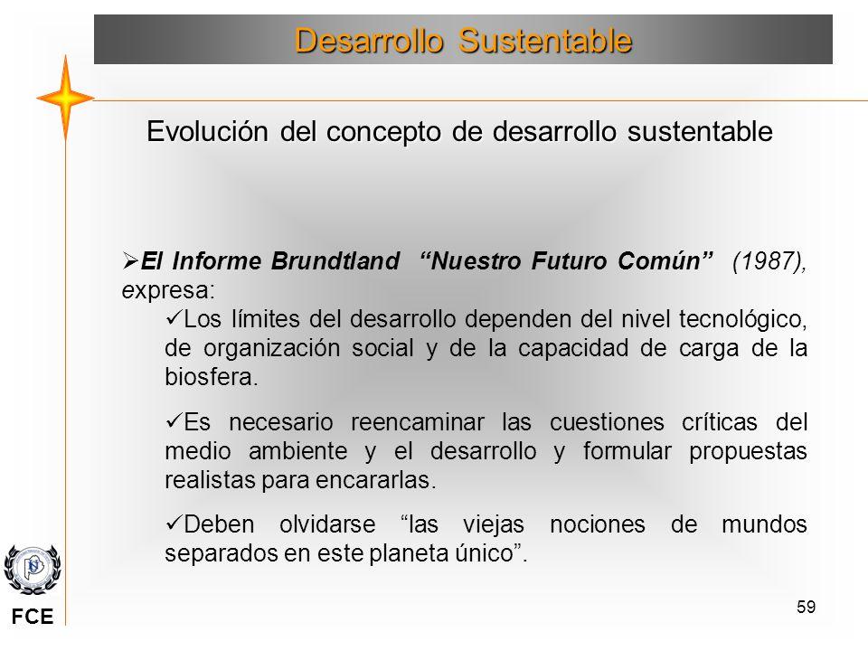 59 El Informe Brundtland Nuestro Futuro Común (1987), expresa: Los límites del desarrollo dependen del nivel tecnológico, de organización social y de