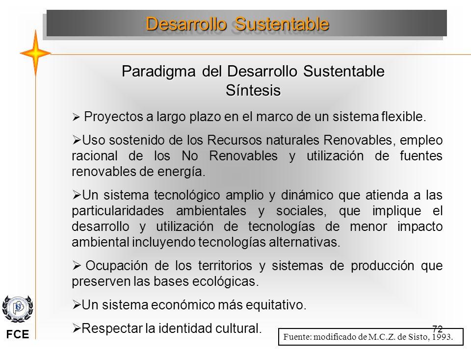 72 Paradigma del Desarrollo Sustentable Síntesis Desarrollo Sustentable Proyectos a largo plazo en el marco de un sistema flexible. Uso sostenido de l