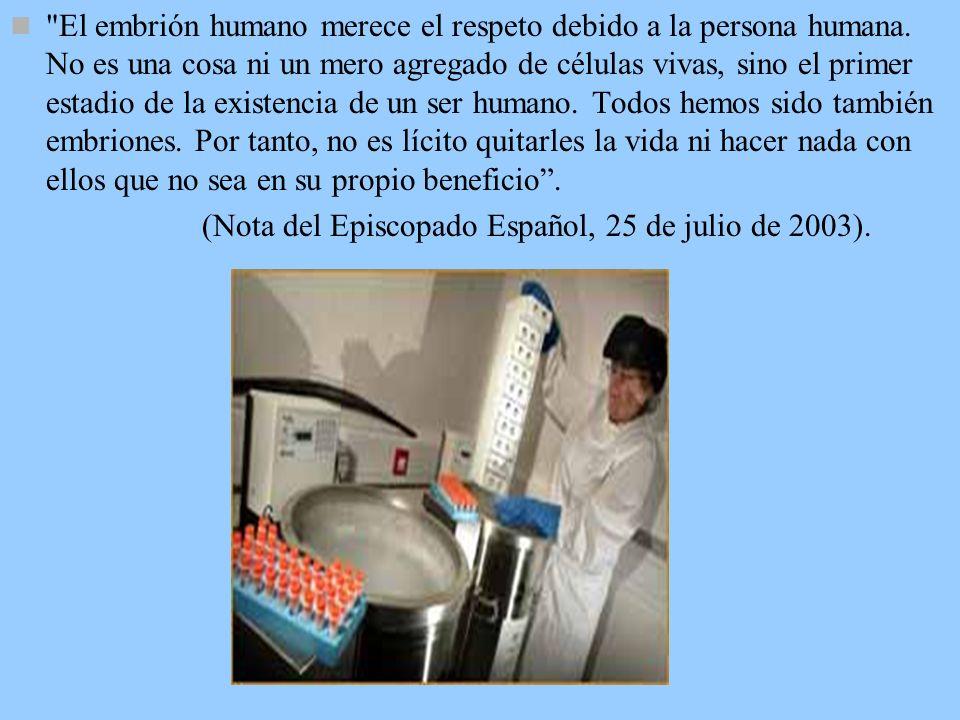 6. LA ACUMULACION DE EMBRIONES HUMANOS. de Las técnicas de fecundación artificial dan lugar a la producción de embriones humanos en los laboratorios d