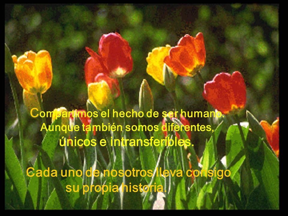 C ompartimos el hecho de ser humano. Aunque también somos diferentes, únicos e intransferibles. Cada uno de nosotros lleva consigo su propia historia.