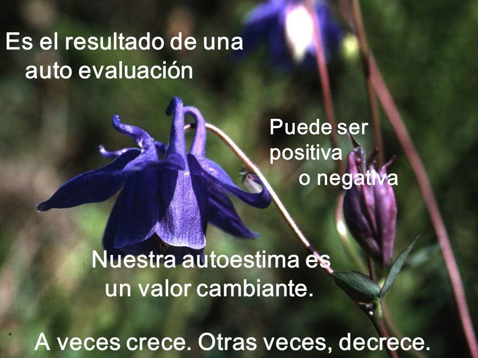 Una buena autoestima favorece los éxitos. Al vivir más éxitos, es más fácil soportar algún fracaso.