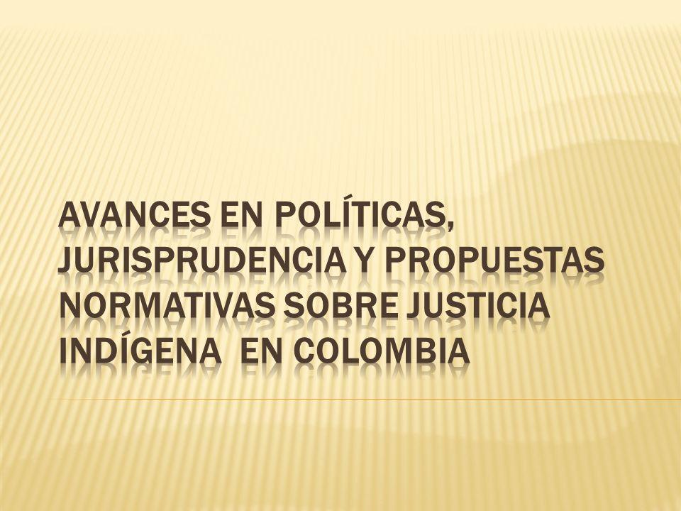 Desde la expedición de la Constitución Política de Colombia, la jurisdicción especial indígena empieza a ser conocida y reconocida en el mundo no indígena.