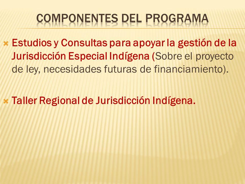 Estudios y Consultas para apoyar la gestión de la Jurisdicción Especial Indígena (Sobre el proyecto de ley, necesidades futuras de financiamiento). Ta