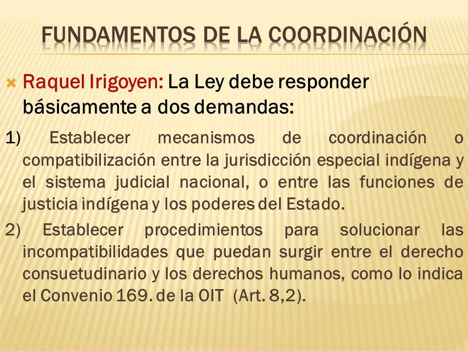 Raquel Irigoyen: La Ley debe responder básicamente a dos demandas: 1) Establecer mecanismos de coordinación o compatibilización entre la jurisdicción