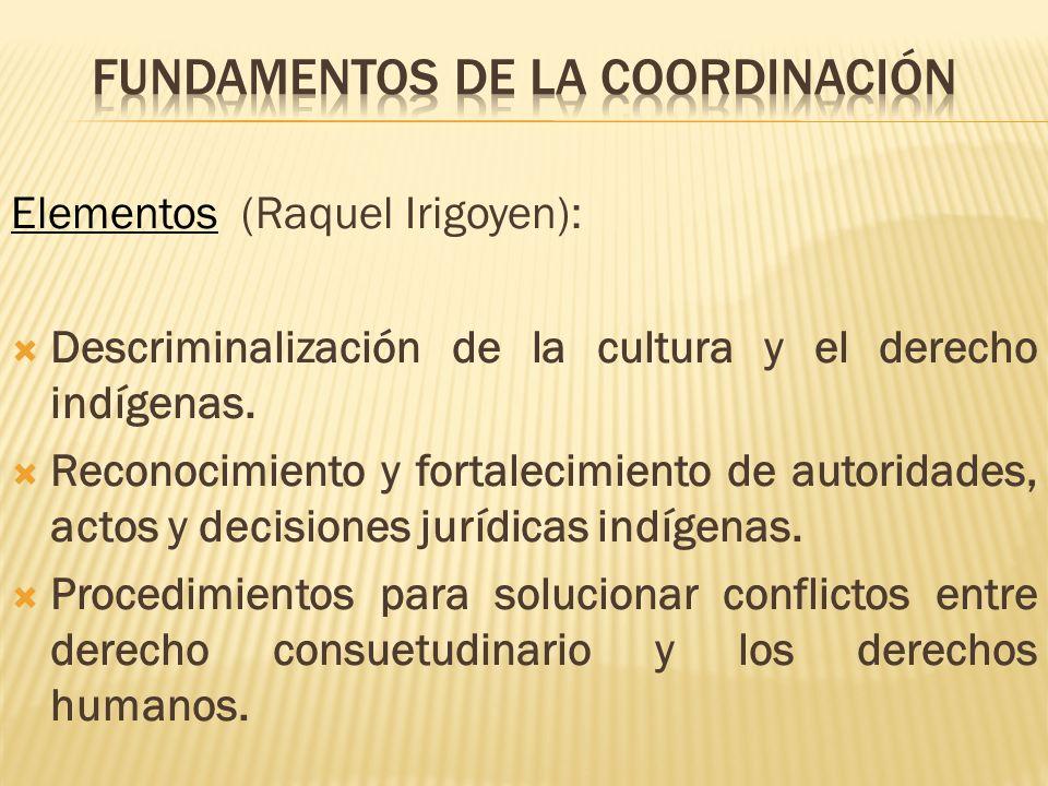 Elementos (Raquel Irigoyen): Descriminalización de la cultura y el derecho indígenas. Reconocimiento y fortalecimiento de autoridades, actos y decisio