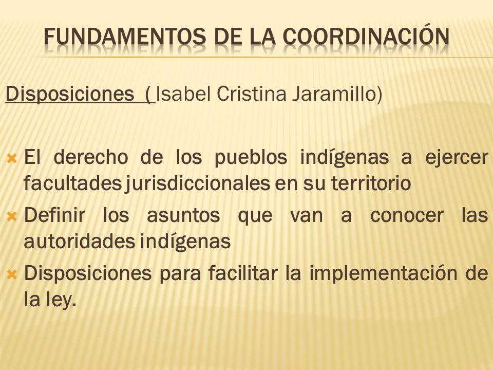 Disposiciones ( Isabel Cristina Jaramillo) El derecho de los pueblos indígenas a ejercer facultades jurisdiccionales en su territorio Definir los asun