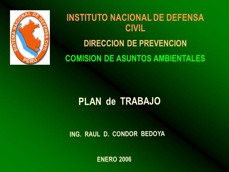 1 INSTITUTO NACIONAL DE DEFENSA CIVIL DIRECCION DE PREVENCION COMISION DE ASUNTOS AMBIENTALES PLAN de TRABAJO ING.