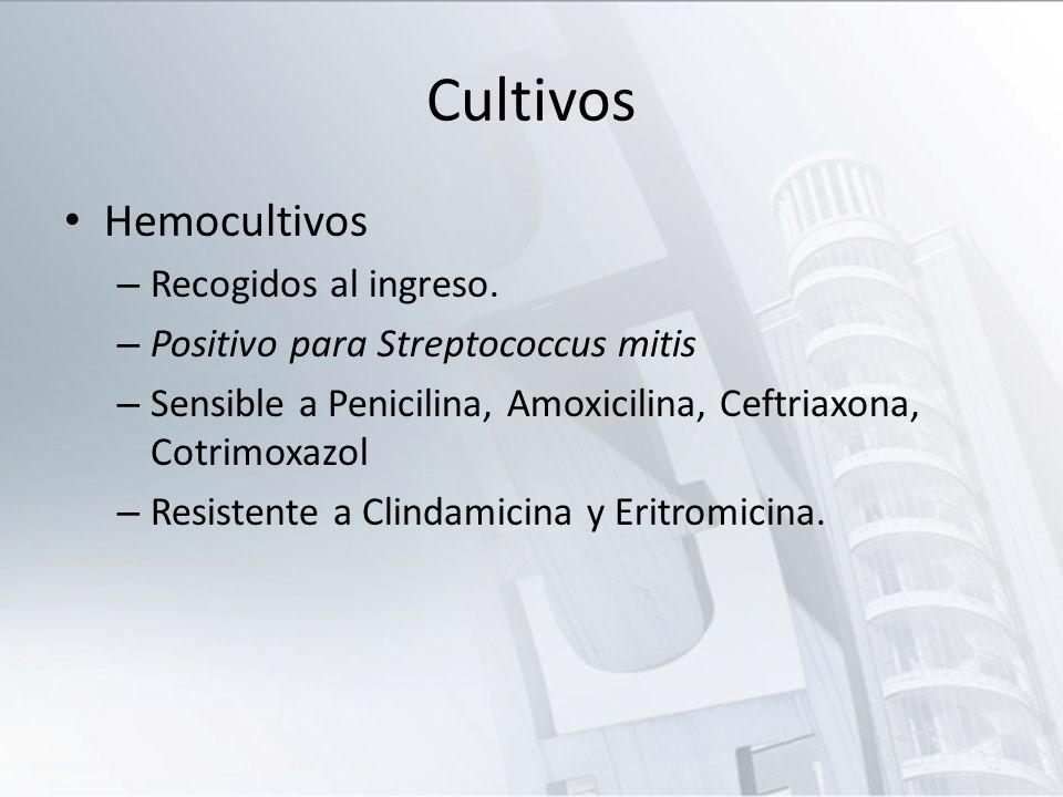 Cultivos Hemocultivos – Recogidos al ingreso. – Positivo para Streptococcus mitis – Sensible a Penicilina, Amoxicilina, Ceftriaxona, Cotrimoxazol – Re