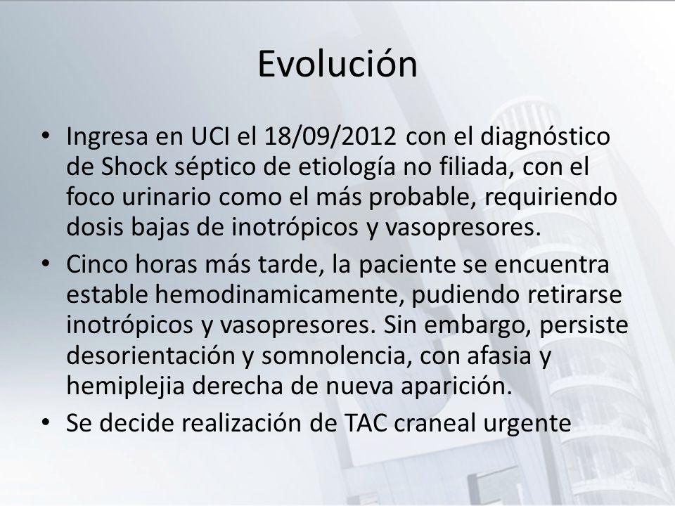 Evolución Ingresa en UCI el 18/09/2012 con el diagnóstico de Shock séptico de etiología no filiada, con el foco urinario como el más probable, requiri