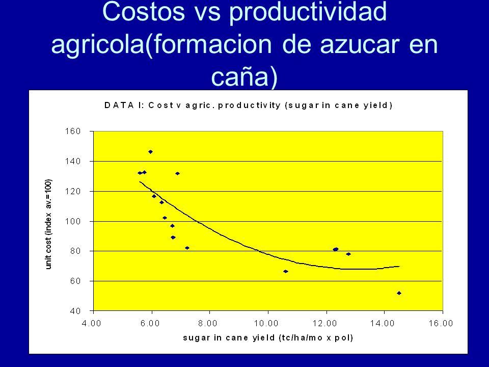 101 Costos vs productividad agricola(formacion de azucar en caña)