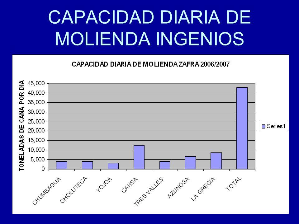 13 CAPACIDAD DIARIA DE MOLIENDA INGENIOS