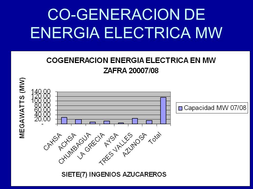 16 CO-GENERACION DE ENERGIA ELECTRICA MW