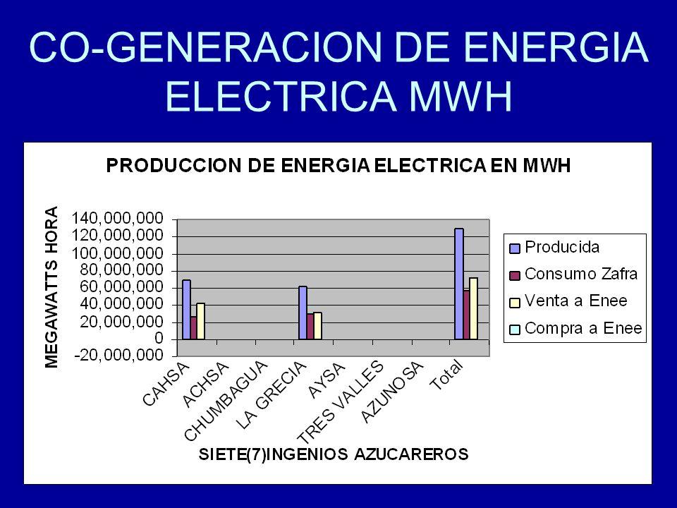 17 CO-GENERACION DE ENERGIA ELECTRICA MWH