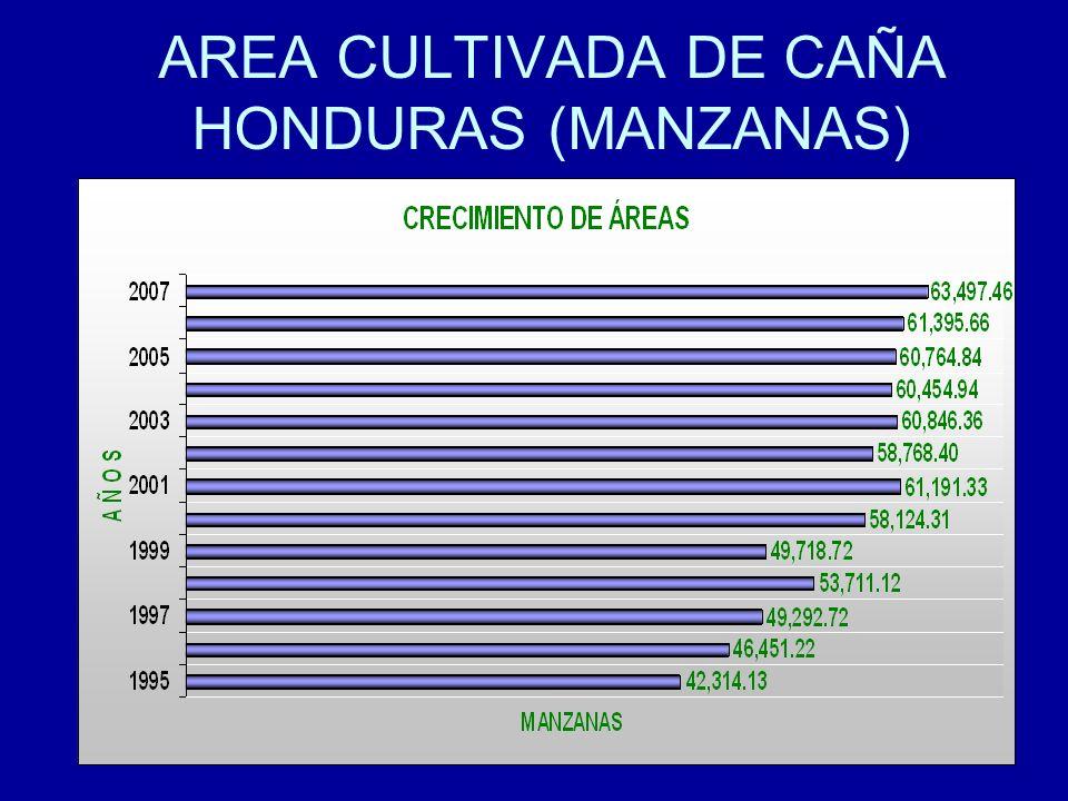 20 AREA CULTIVADA DE CAÑA HONDURAS (MANZANAS)