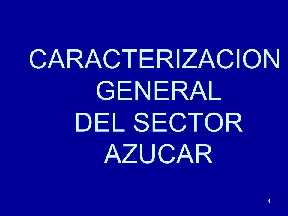 4 CARACTERIZACION GENERAL DEL SECTOR AZUCAR