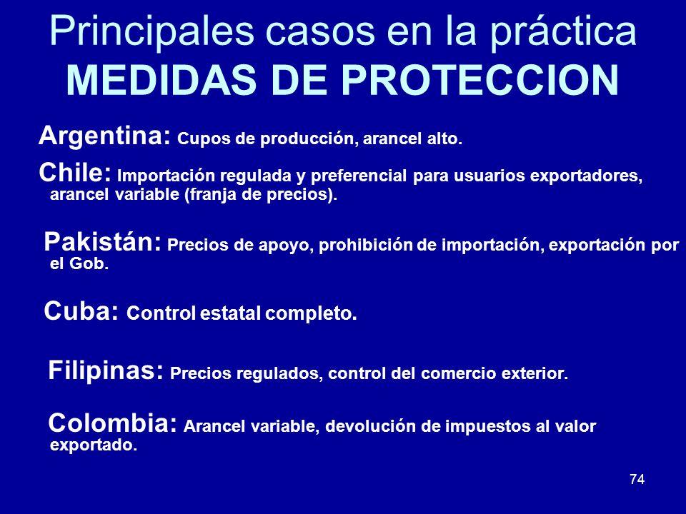 74 Principales casos en la práctica MEDIDAS DE PROTECCION Argentina: Cupos de producción, arancel alto. Chile: Importación regulada y preferencial par