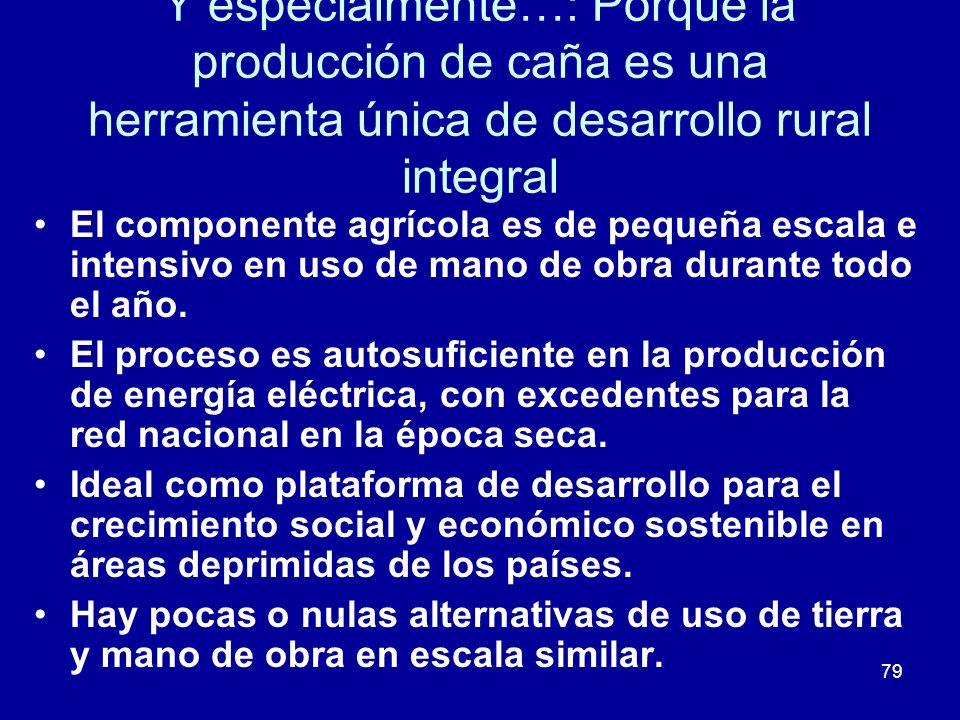 79 Y especialmente…: Porque la producción de caña es una herramienta única de desarrollo rural integral El componente agrícola es de pequeña escala e