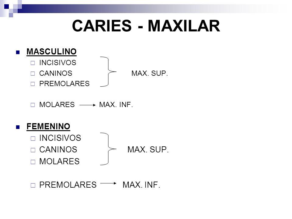CARIES - MAXILAR MASCULINO INCISIVOS CANINOS MAX. SUP.
