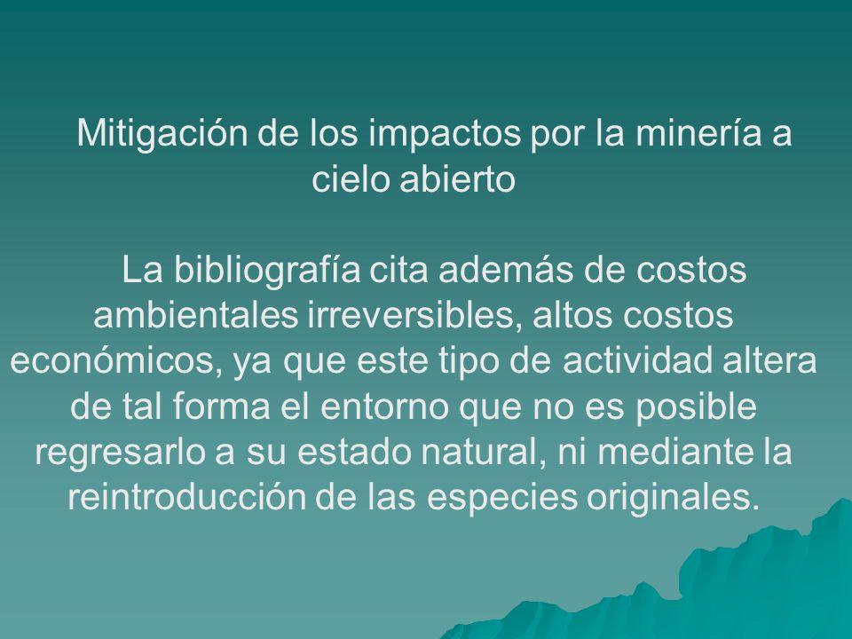 Mitigación de los impactos por la minería a cielo abierto La bibliografía cita además de costos ambientales irreversibles, altos costos económicos, ya