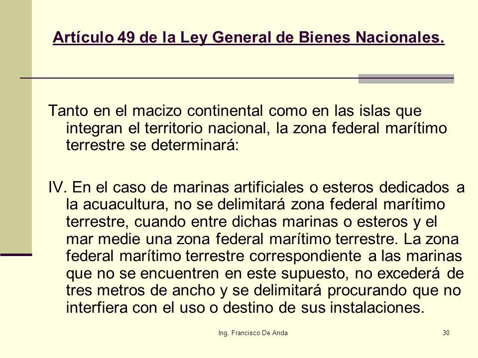 Ing. Francisco De Anda29 Marinas En el caso de marinas artificiales..., no se delimitará Zona Federal Marítimo Terrestre, cuando entre dichas marinas