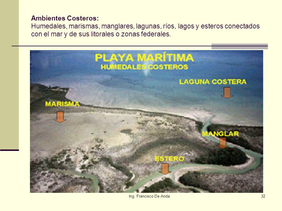 Ing. Francisco De Anda31 5.- ¿Y los ríos, arroyos, humedales. lagos, marismas, arrecifes? Son aguas continentales las aguas nacionales, superficiales