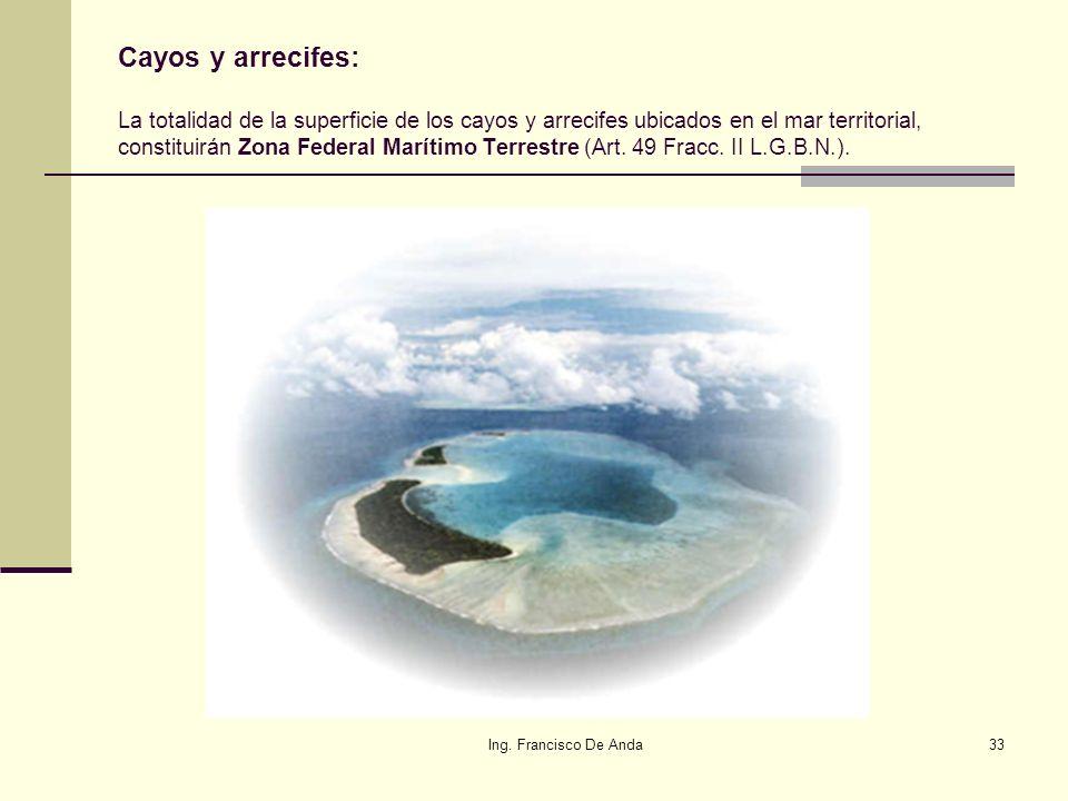 Ing. Francisco De Anda32 Ambientes Costeros: Humedales, marismas, manglares, lagunas, ríos, lagos y esteros conectados con el mar y de sus litorales o