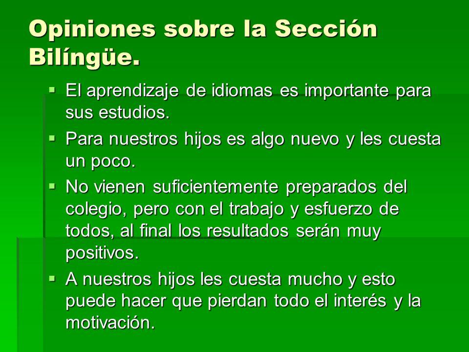Opiniones sobre la Sección Bilíngüe. El aprendizaje de idiomas es importante para sus estudios.