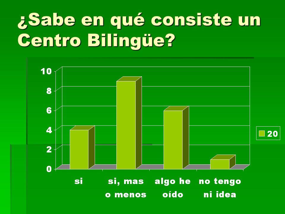 ¿Sabe en qué consiste un Centro Bilingüe