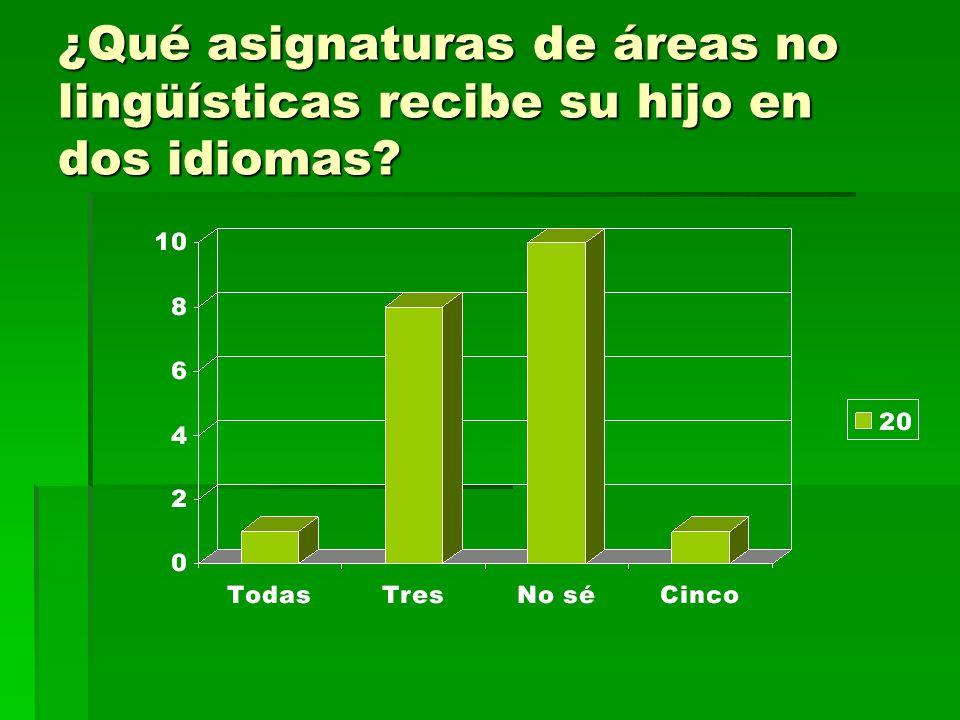 ¿Qué asignaturas de áreas no lingüísticas recibe su hijo en dos idiomas