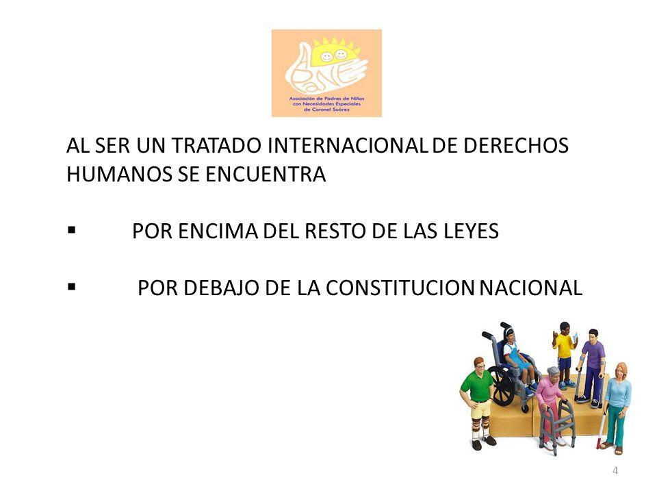 PRINCIPIOS GENERALES - NUEVOS PARADIGMAS - CONSIDERACION DE LAS PERSONAS COMO CIUDADANOS DE DERECHO: RESPETO POR SU DIGNIDAD INHERENTE, AUTONOMIA INDIVIDUAL, (INCLUIDA LA LIBERTAD DE TOMAR SUS DECICIONES), LA NO DISCRIMINACION, LA INCLUSION, LA ACCESIBILIDAD, EL RESPETO A LA DIFERENCIA, EL RECONOCIMIENTO DE LA PERSONALIDAD, LA PROTECCION DE LAS PERSONAS FRENTE A SITUACIONES DE RIESGO O EMERGENCIAS HUMANITARIAS, LA PROTECCION CONTRA EL ABUSO, LA EXPLOTACION Y LA VIOLENCIA.