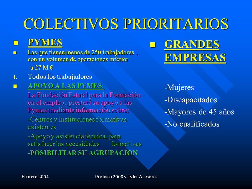 Febrero 2004Profisco 2000 y Lyfer Asesores COLECTIVOS PRIORITARIOS PYMES PYMES Las que tienen menos de 250 trabajadores, con un volumen de operaciones