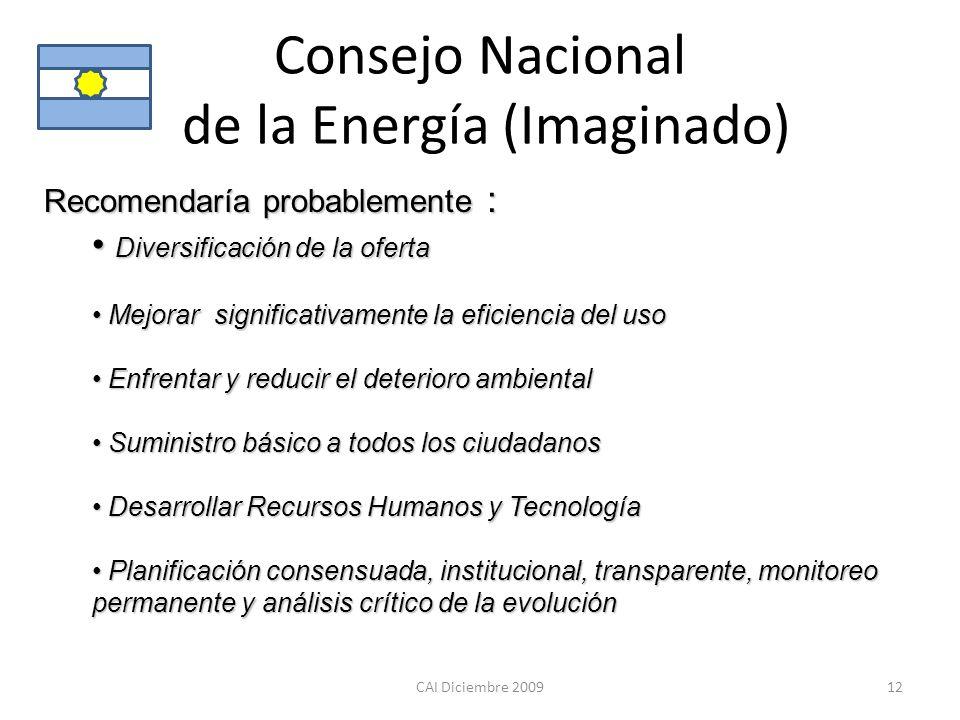 Consejo Nacional de la Energía (Imaginado) CAI Diciembre 200912 Recomendaría probablemente : Diversificación de la oferta Diversificación de la oferta