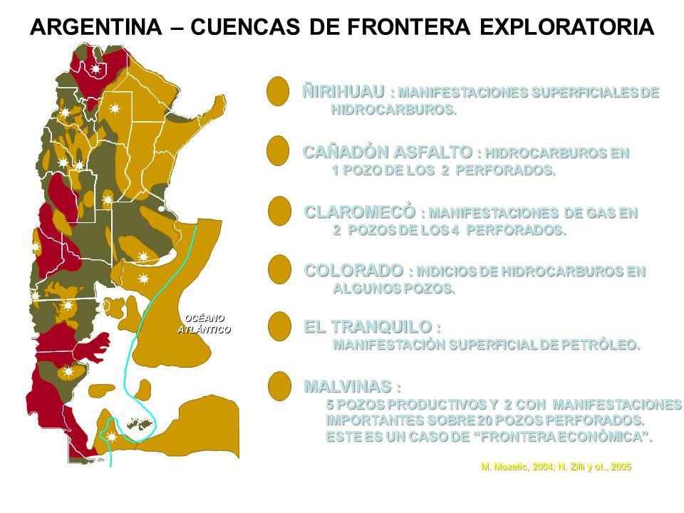 ARGENTINA – CUENCAS DE FRONTERA EXPLORATORIA OCÉANOATLÁNTICO ÑIRIHUAU : MANIFESTACIONES SUPERFICIALES DE HIDROCARBUROS. HIDROCARBUROS. CAÑADÓN ASFALTO