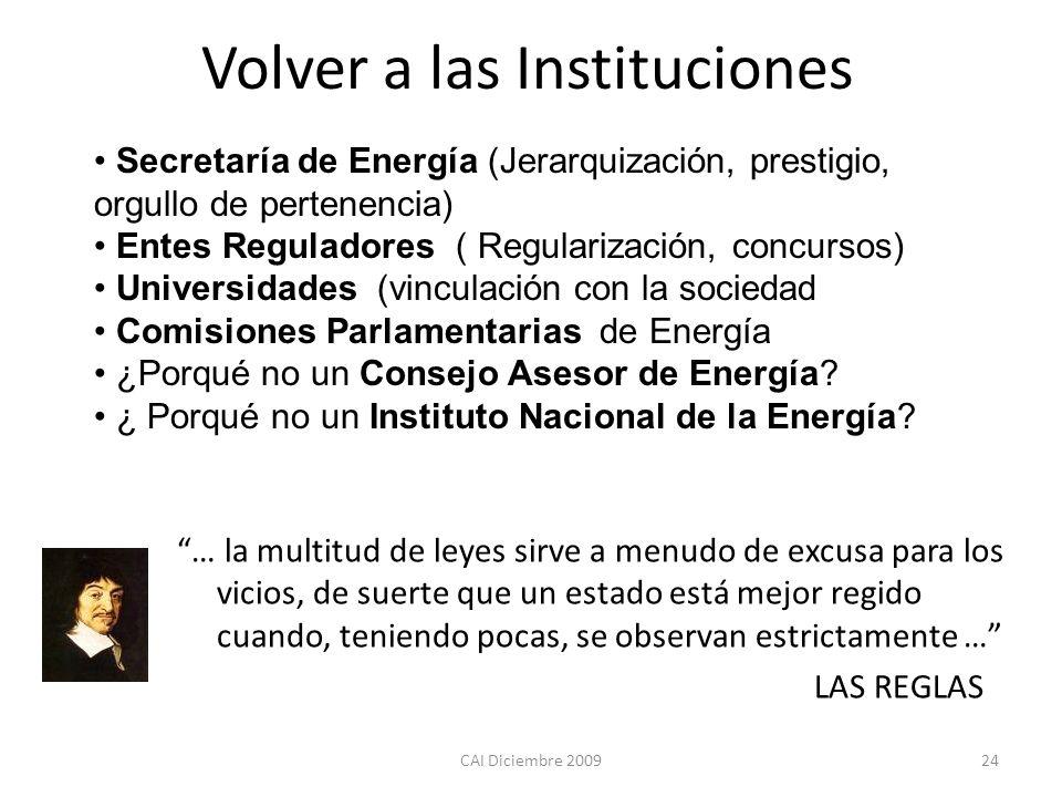 CAI Diciembre 200924 Volver a las Instituciones Secretaría de Energía (Jerarquización, prestigio, orgullo de pertenencia) Entes Reguladores ( Regulari
